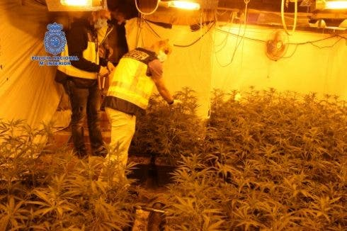 Murcia Drugs Find 1