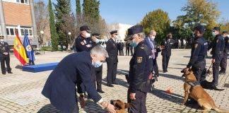 Interior Premia A Alva Y Neo Dos Perros Policias De Malaga