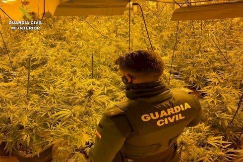 British Marijuana Farmer Gets Third Drugs Arrest For Running Indoor Plantation On Spain S Costa Blanca
