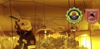 Broken Water Hosepipe Exposes Drugs Farm In House On Spain S Costa Blanca