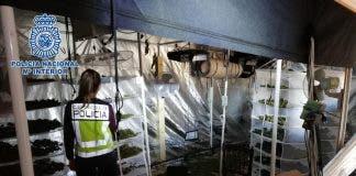 Fleeing Marijuana Farm Owner Attacks Police After Hiding In Chemist On Spain S Costa Blanca