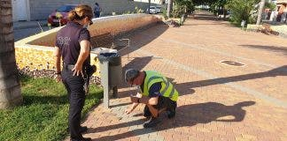 Foul Deed As Dna Tracks Down Dog Owner For Not Picking Up Mess 70 Kilometres Away From Home In Spain S Valencian Community