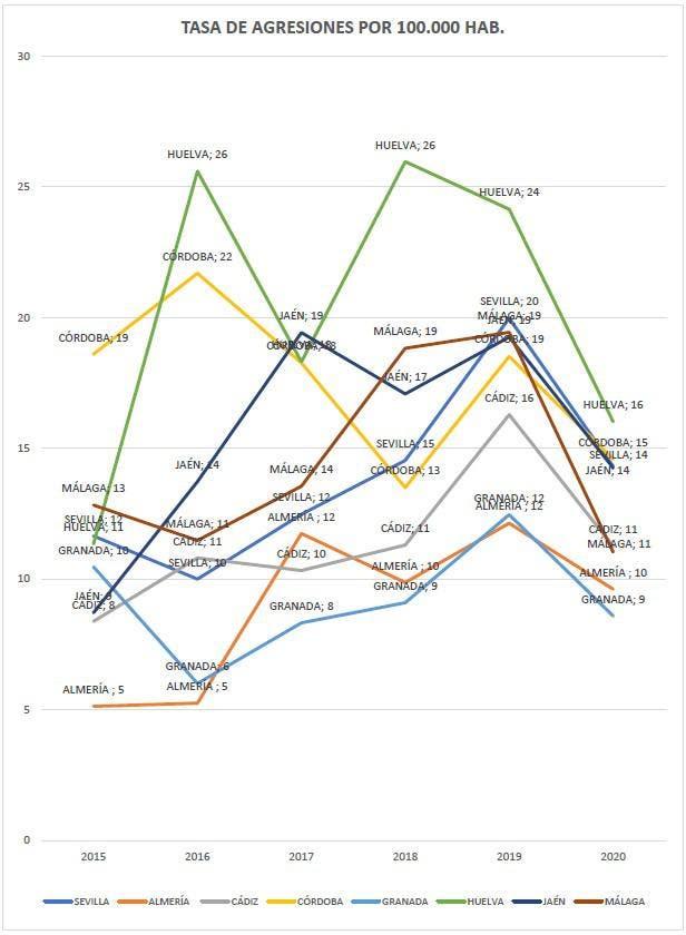 Grafico 05