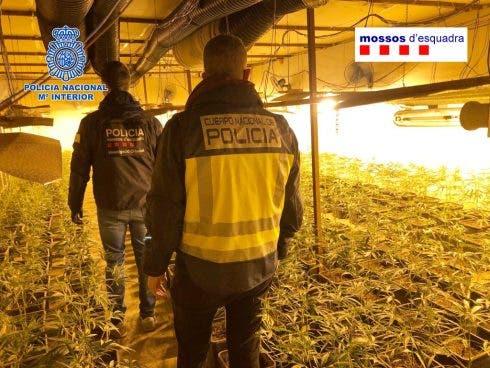 Foto Operación Breda 001