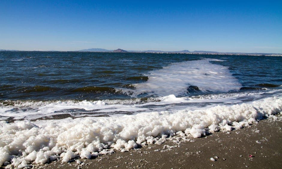 Prosecutors to force Murcia's government to investigate companies polluting the Mar Menor in Spain