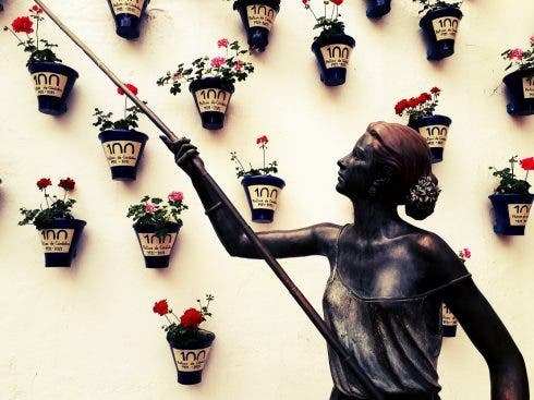 Cordoba Flowers 1 1