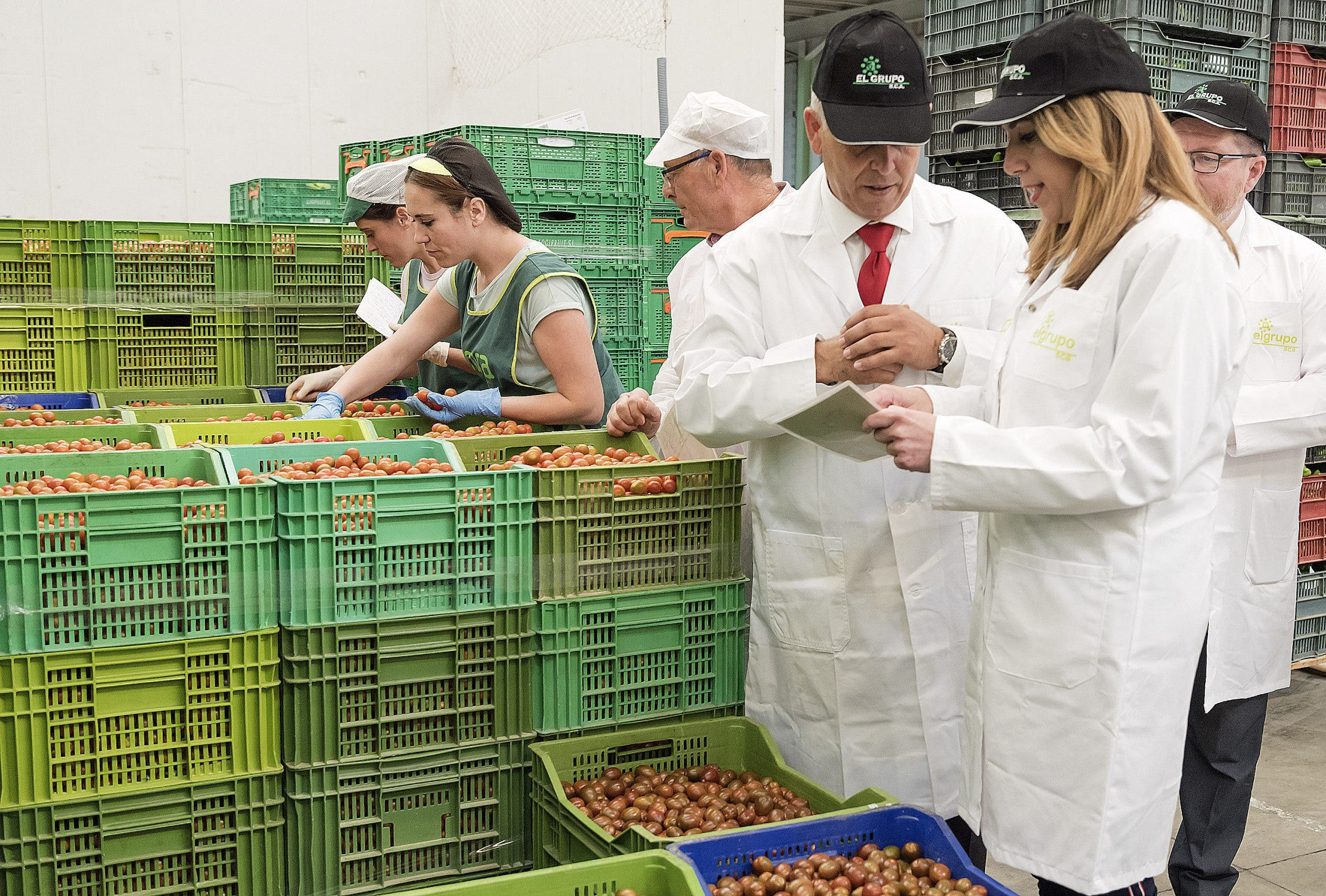 Agricultural coops have traditionally been the strongest in Castellon