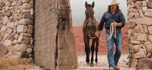 Natural Horsemanship3