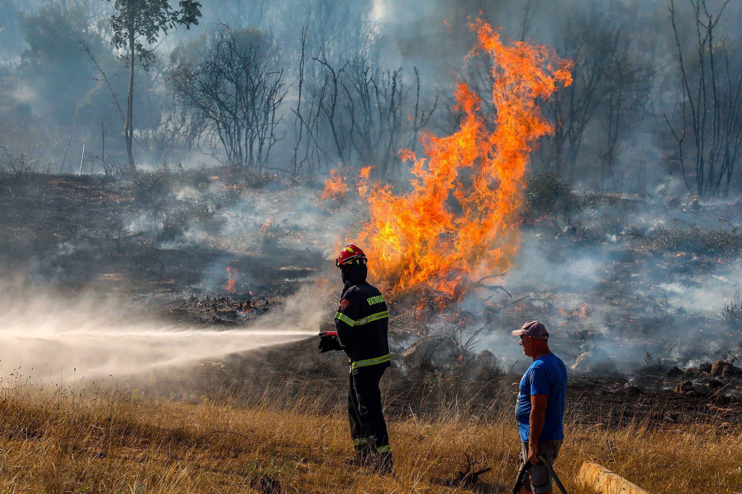 Forest fire Castellon
