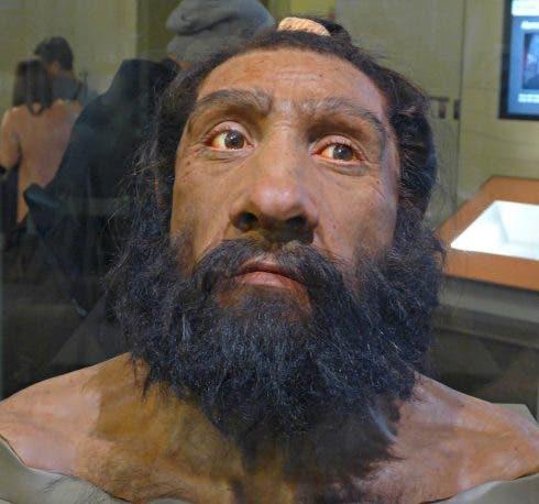 Neanderthal Male. Credit Ali Eminov. Flickr