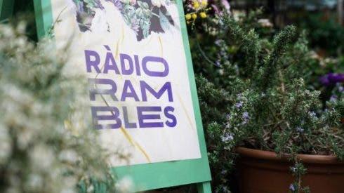 Radio Rambles Gen Cat Photo 1
