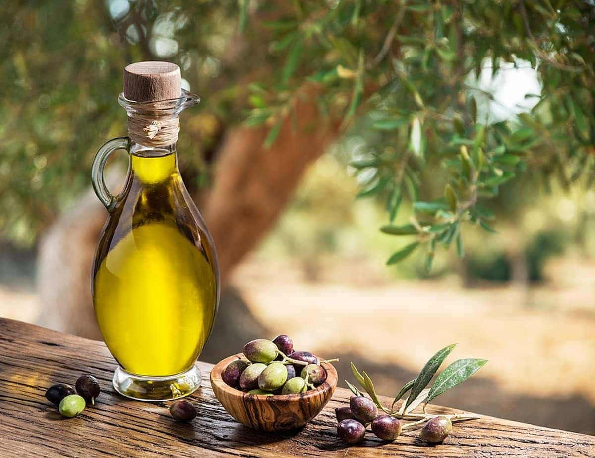 Spain to host international conference backing the health benefits of olive oil